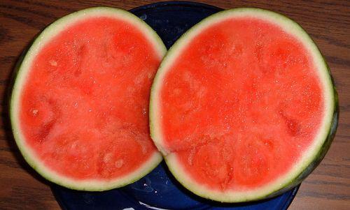 Watermelon seedless