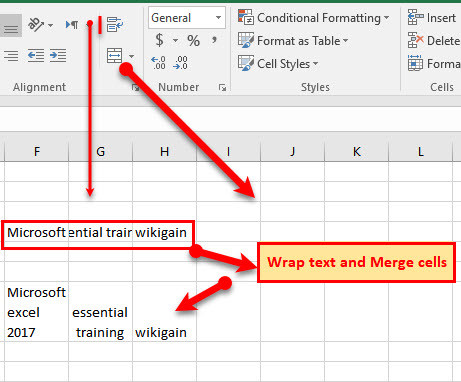 How to Use Format Cells & Styles in Microsoft Excel 2016