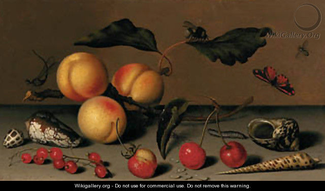 Apricots on a stalk, cherries, a wild strawberry, redcurrants, shells, a butterfly, a bee, a spider, a fly, a caterpillar and a dragonfly on a ledge - Balthasar Van Der Ast
