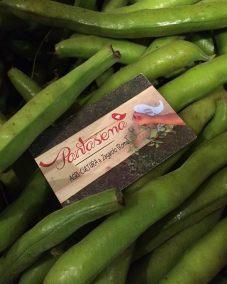pantasema-farm-fagiolini