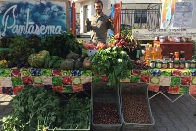 WIKI HOSTEL FAMILY pantasema farmer market organic veggies
