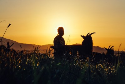 WIKI HOSTEL FAMILY pantasema sunset coat farmer
