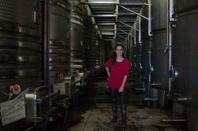 wikihostel-wine-tour-f-19-1
