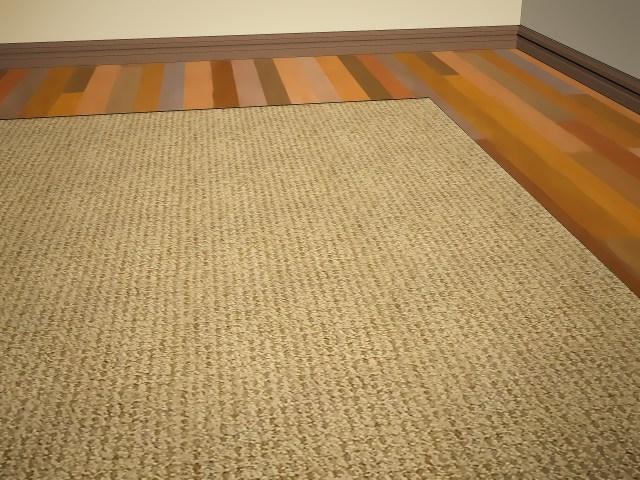 Einen Jute oder Sisalteppich reinigen: 8 Schritte (mit Bildern