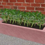 How To Make Concrete Planters 14 Steps With Pictures Wikihow