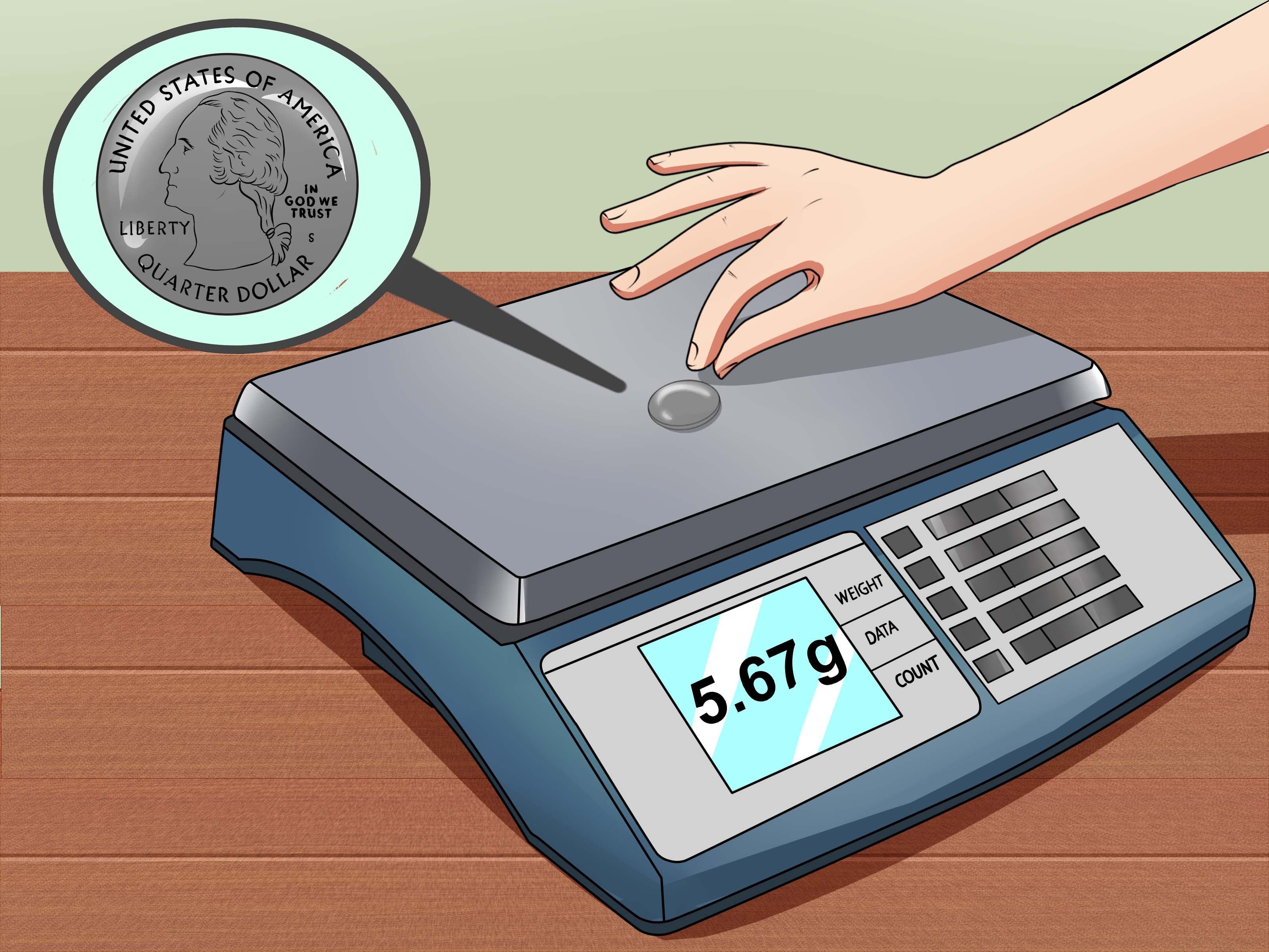 How To Know If Your Scale Is Working Correctly 12 Steps