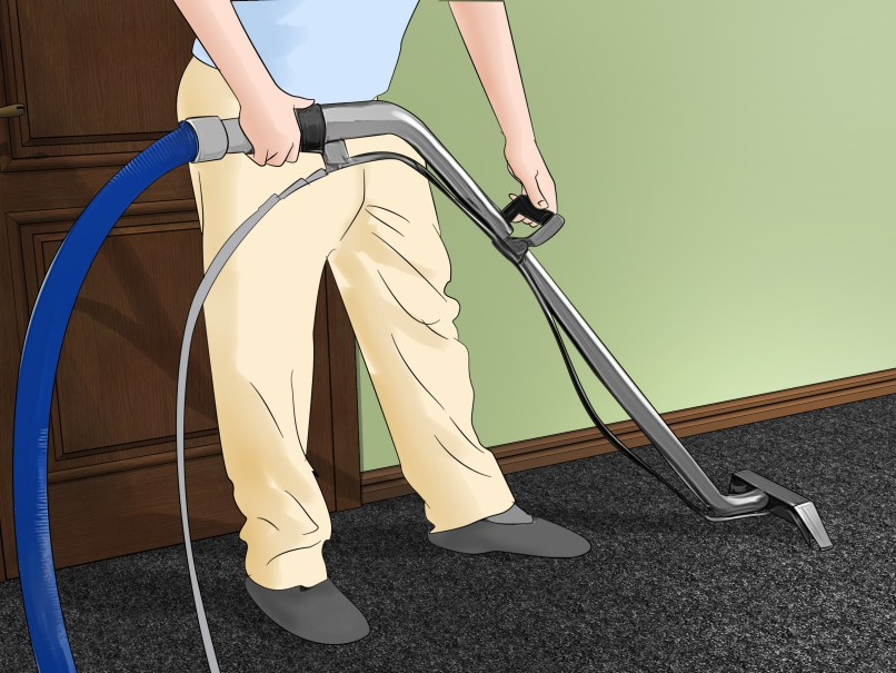 Mold Smell In Carpet Home Design