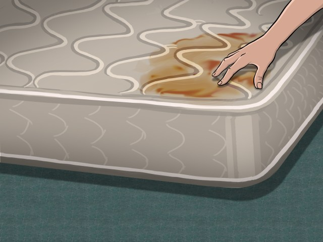 How to Deep Clean a Mattress: 29 Steps (with Pictures) - wikiHow