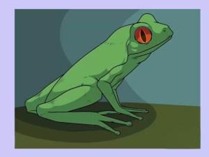 3 Ways to Draw a Frog StepbyStep  wikiHow