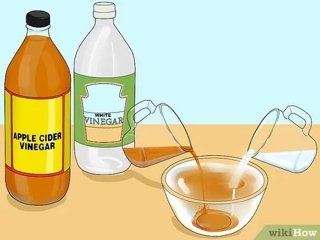 3 ways to steam clean a microwave wikihow