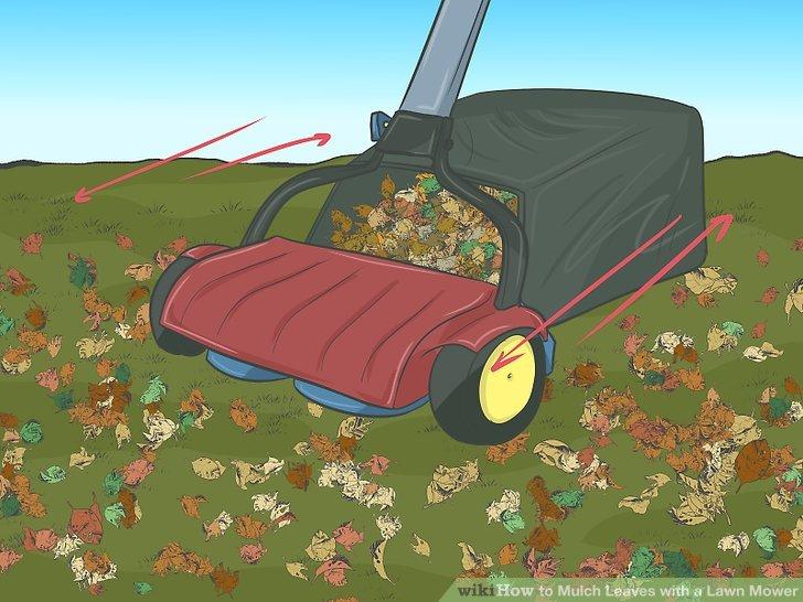 Leaf Rake Lawn Mower