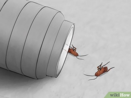 Image titled Trap Cockroaches Step 12