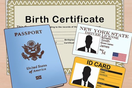 birth certificate west palm beach » Free Resume 2018   Free Resume