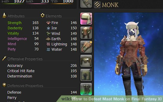How To Defeat Maat Monk On Final Fantasy XI 6 Steps