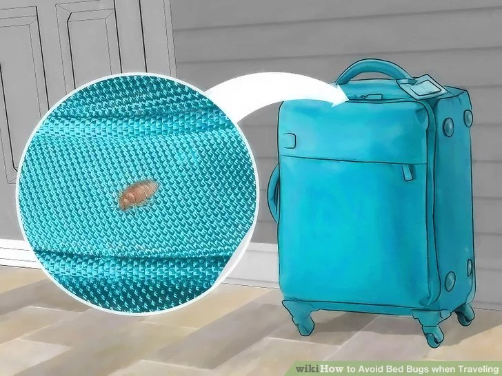 Image titled Avoid Bed Bugs when Traveling Step 10