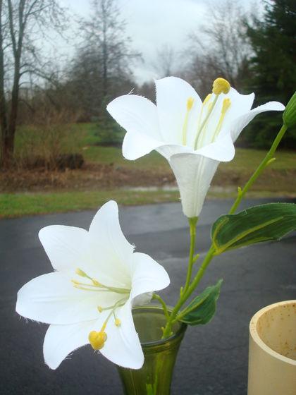 Silklilies2views.jpg
