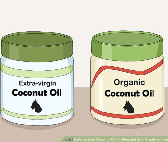 Image Titled Use Coconut Oil For Flea And Skin Treatment On Dogs Step