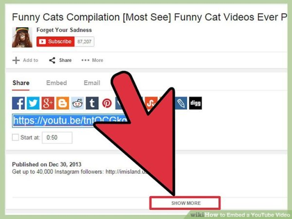 How to Embed a YouTube Video: 13 Steps (with Pictures ...