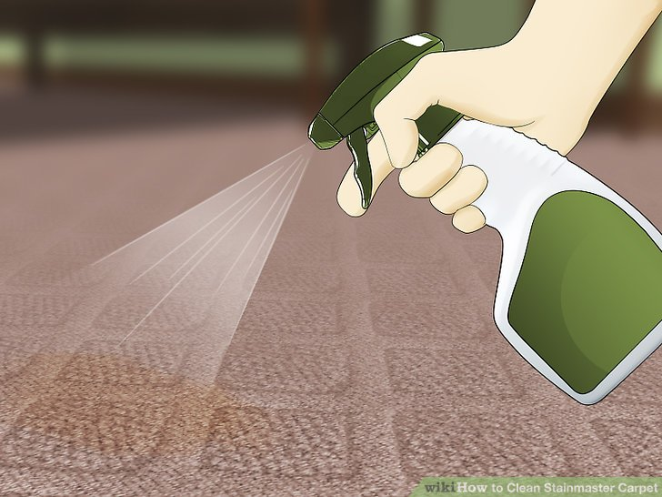 3 Ways to Clean Stainmaster Carpet   wikiHow Image titled Clean Stainmaster Carpet Step 6