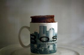 Make a Cake in a Mug