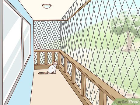 How To Make A Balcony Safe For Cats 10