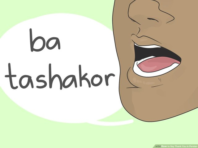 How to Say Thank You in Persian: 25 Steps (with Pictures) - wikiHow