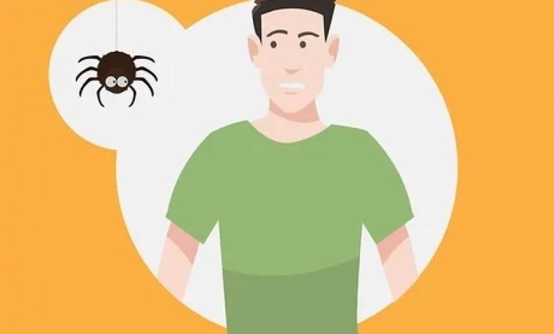 فوبيا العناكب .. كيف تواجه خوفك من تلك الحشرة الخبيثة