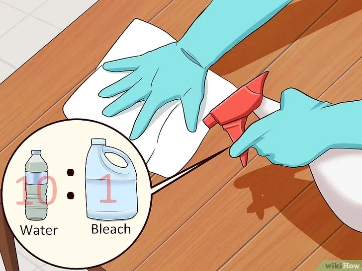 Immagine titolata Remove Cat Urine Smell Step 6
