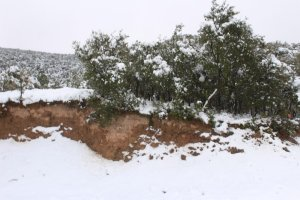 Sierra de Yerga