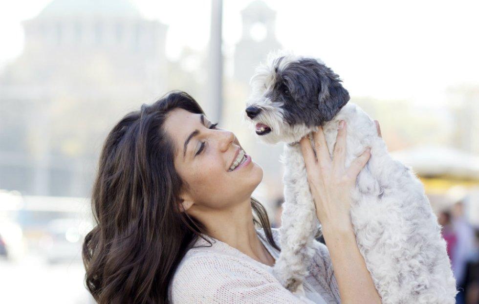 Verplichtingen Bij Het Hebben Van Een Hond In Spanje