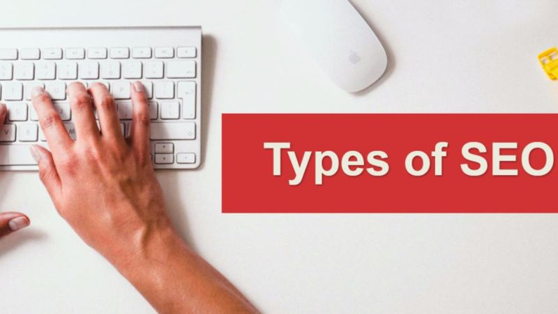 Different Types of SEOS You Need To Know
