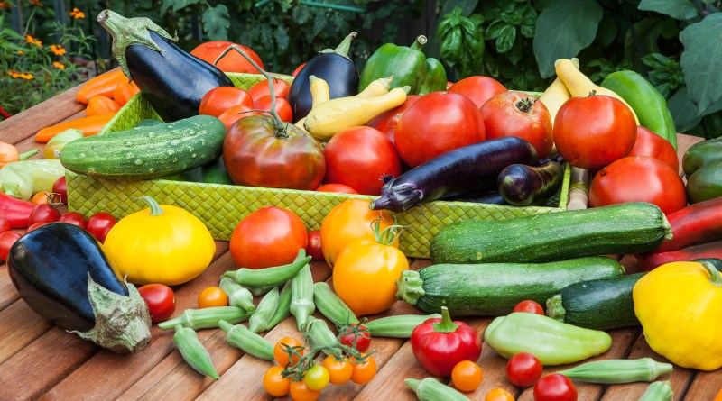 The Wilbrahams' and six Mile Bottom Veg, Fruit and Produce Show 14th July 2018