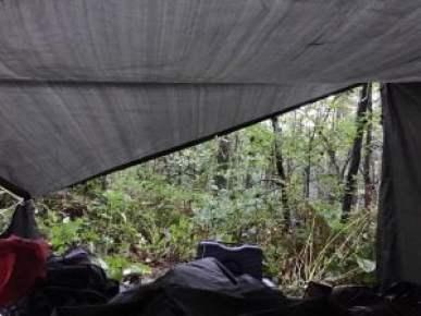 boete wildkamperen hoog