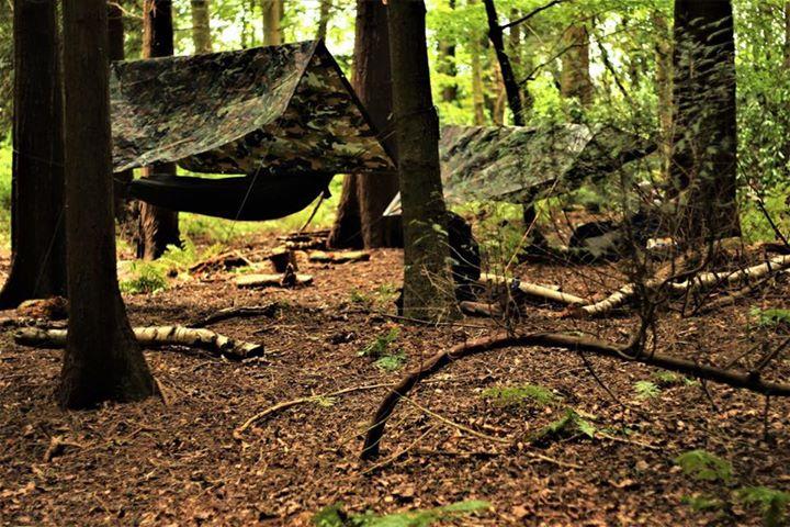 1 Day Woodland Survival & Bushcraft Course - image  on https://www.wild-survivor.co.uk