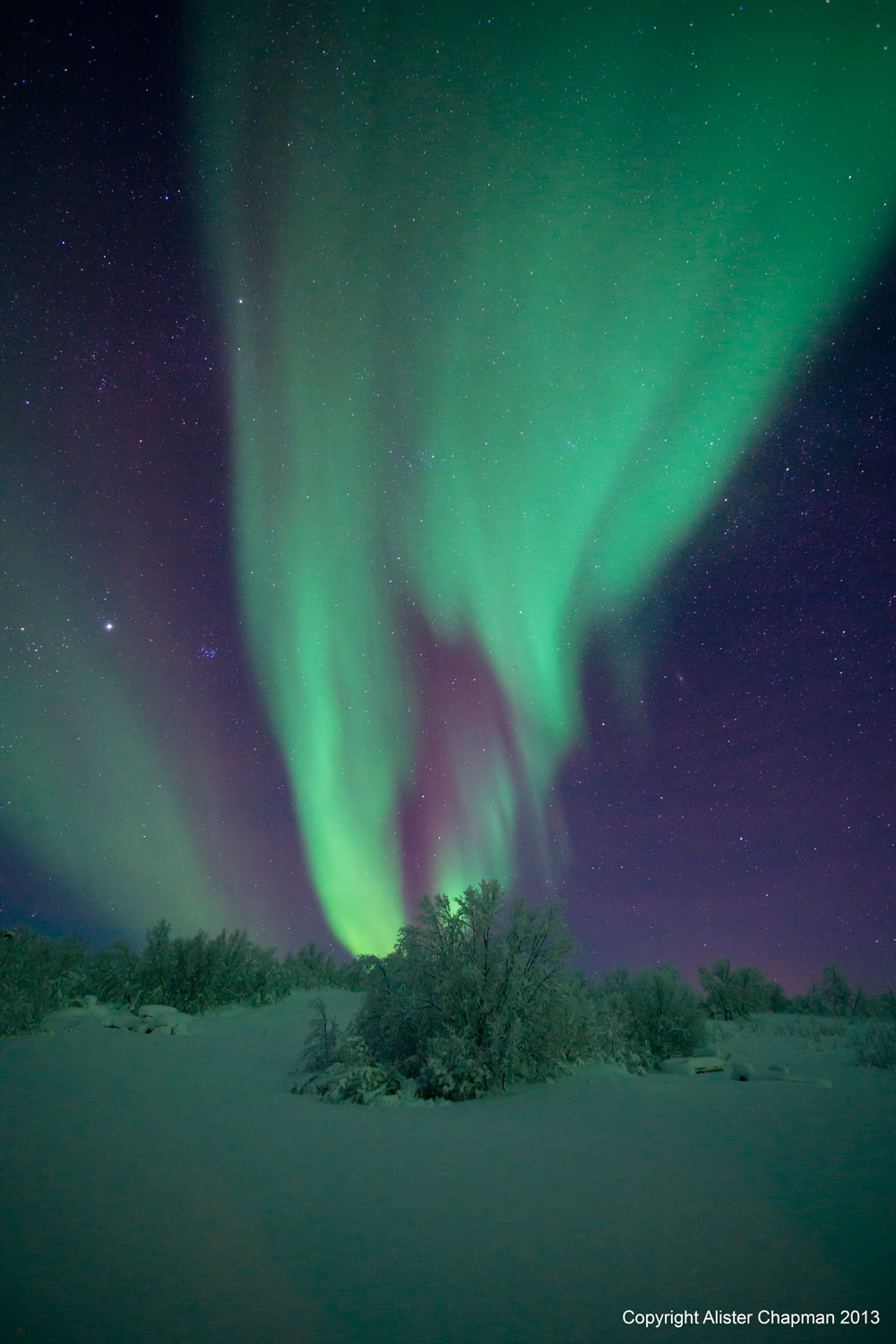 Northern Light Tours Norway