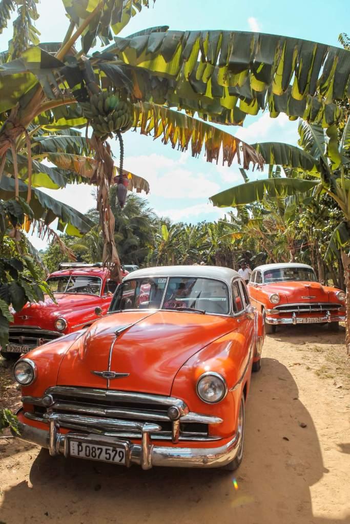 Kuba Collectivo