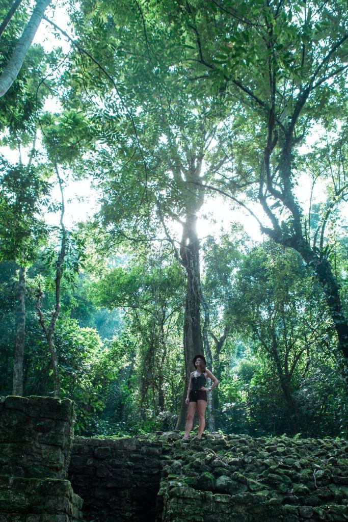 Der Urwald von Palenque in Mexiko