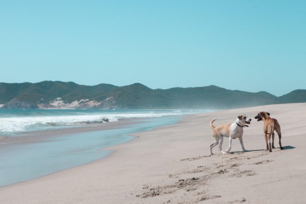 Strände von Oaxaca Playa Caipi