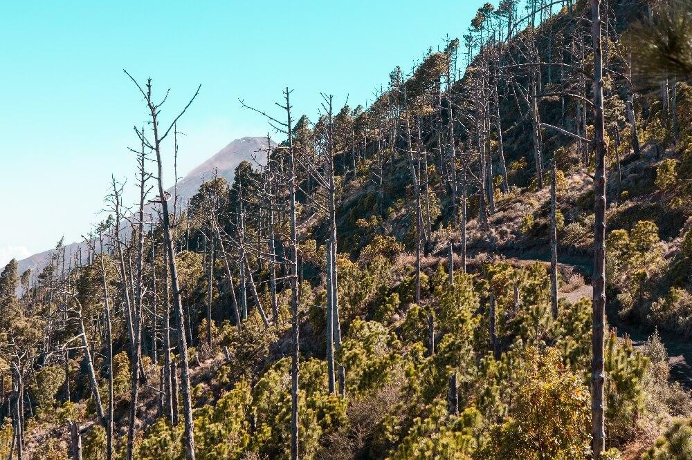 Wanderung auf den Vulkan Acatenango in Guatemala