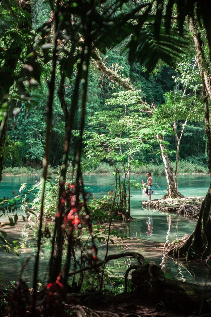 Natur pur in Semuc Champey