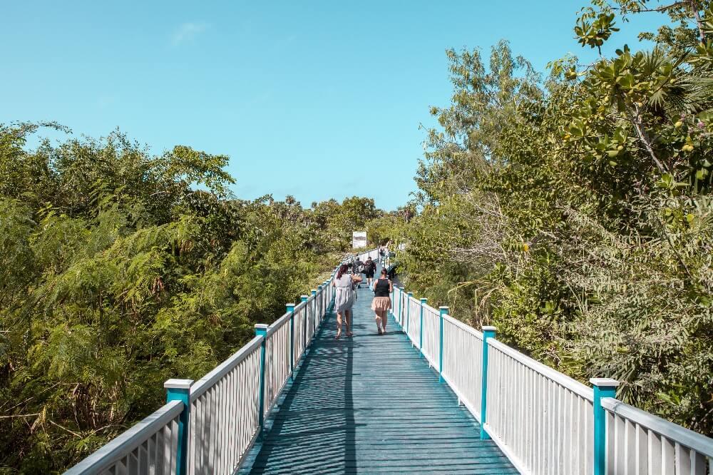 Weg zum Playa Pilar auf Cayo Guillermo