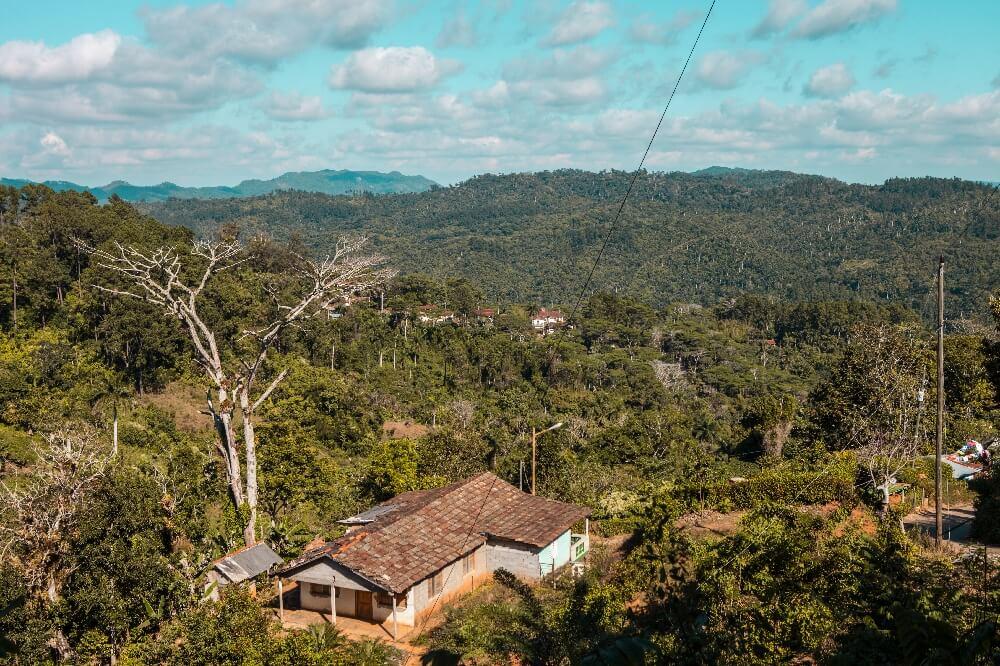 Ausblick in Natur Trinidad