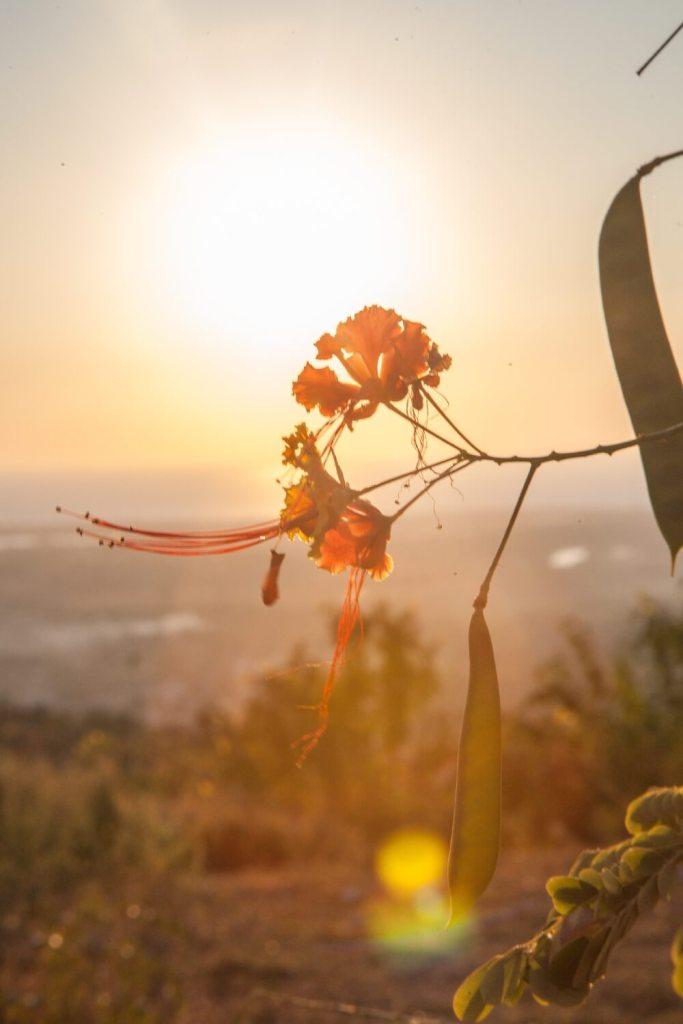 Sonnenuntergang Wetter