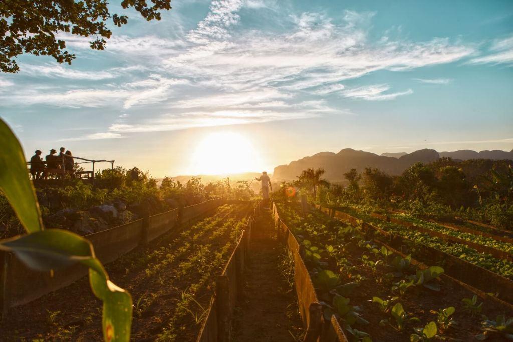 Sonnenuntergang Farm