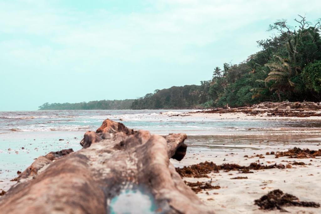 Nationalpark Cahuita Karibikküste von Costa Rica Strand