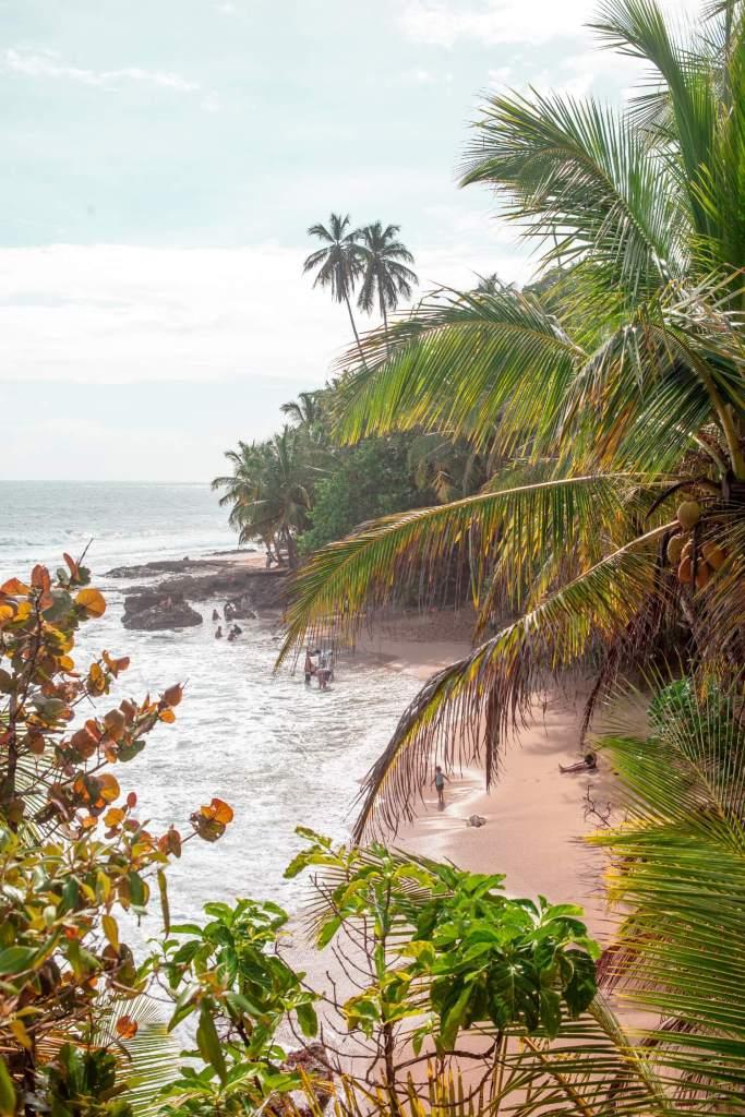 Karibikküste von Costa Rica Nationalpark Manzanillo