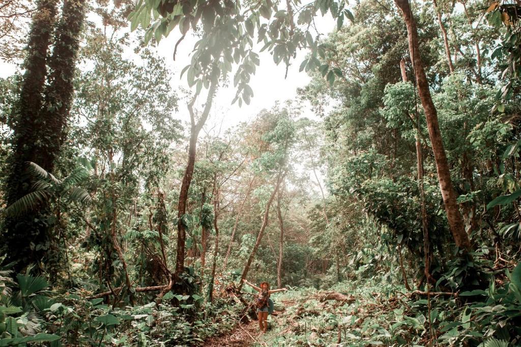 Nationalpark Manzanillo Wanderweg