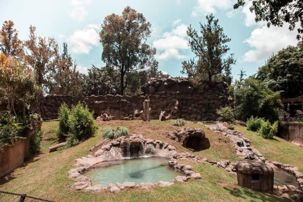 La Aurora Zoo in Guatemala City Gehege