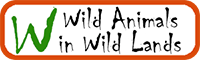 Wild Animals In Wild Lands