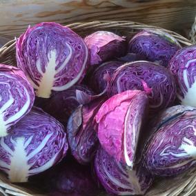 Sliced Purple Cabbage